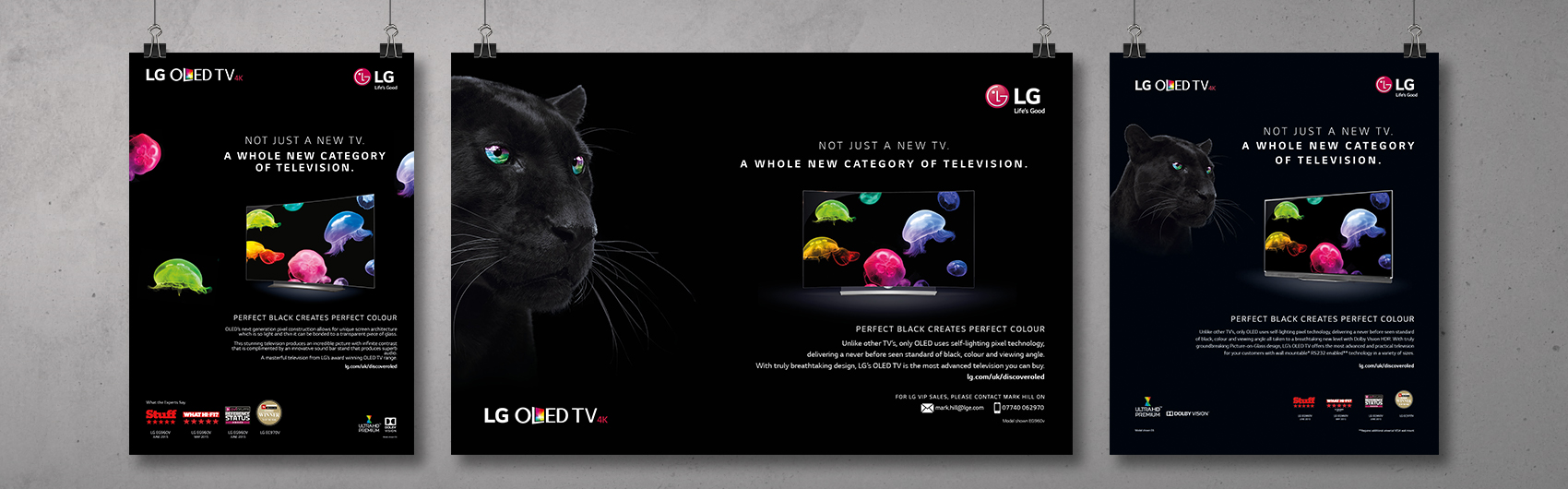 LG OLED Rollout